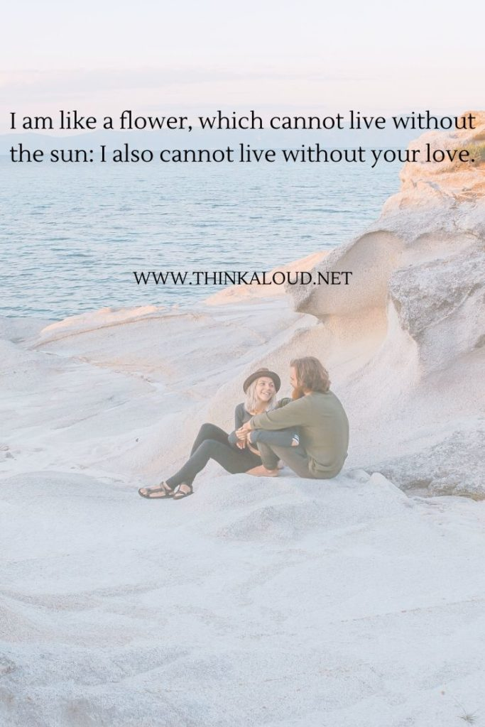 I am like a flower, which cannot live without the sun_ I also cannot live without your love.